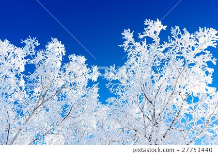 藍天和裂冰 27751440