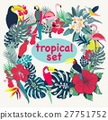 tropical palm birds 27751752