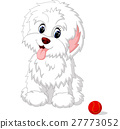 cute, vector, white 27773052