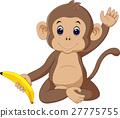 cute monkey 27775755