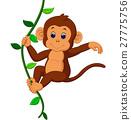 cute monkey 27775756