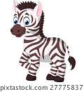 Cartoon zebra 27775837