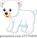 Polar bear 27775849