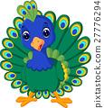 Beautiful peacock 27776294