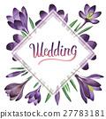 watercolor, wildflower, crocuses 27783181