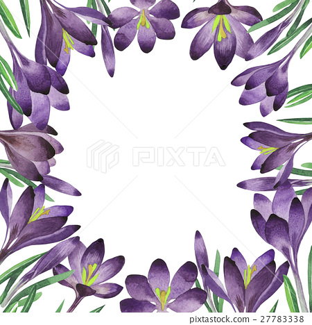 Wildflower crocuses flower frame in a watercolor 27783338