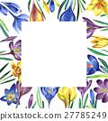 watercolor, wildflower, crocuses 27785249