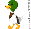 duck cartoon 27797325