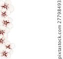 Sakura Flowers, Floral Banner for Springtime 27798493