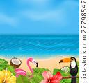 exotic, flamingo, background 27798547