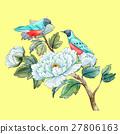 vector bird watercolor 27806163