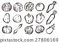 야채, 채소, 양배추 27806169