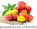 水果 芒果 生产 27810454