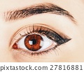 Woman Eye With Makeup And Long Eyelashes 27816881