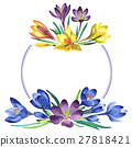watercolor, wildflower, crocuses 27818421