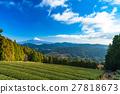 mountain fuji, mountain, tea field 27818673
