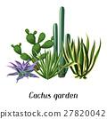 plant, cactus, succulent 27820042