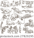 Animals. An hand drawn illustrations on white. 27820295