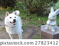 狗和兔子的雕像 27823412