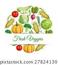 蔬菜 海報 向量 27824130