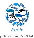 海洋生物 海洋 海报 27824168