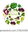 salad vegetable poster 27824206