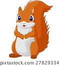 Cartoon adorable squirrel 27829334