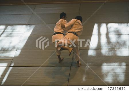 martial artist 27833652