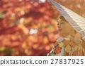 燦爛的秋葉和和服女性肖像 27837925