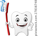 Smiling healthy white tooth cartoon character 27838748