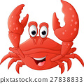 Funny crab cartoon 27838833