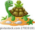 卡通 烏龜 青蛙 27839181