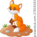 Fox cartoon illustration 27839283
