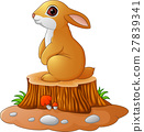 Cute bunny standing on tree stump 27839341