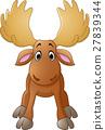 Cartoon happy moose with big horns 27839344
