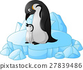 adult Penguin with its chick 27839486