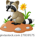 Cute raccoon cartoon 27839575
