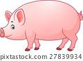 Cartoon happy pig 27839934