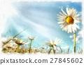 spring daisy flower field vintage 27845602