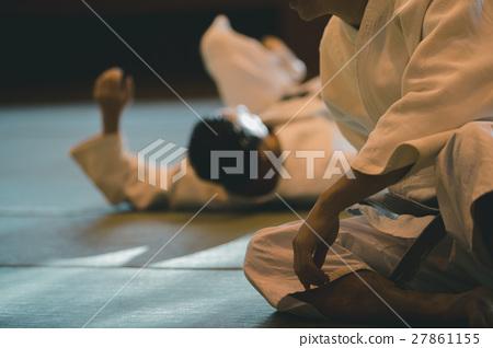 martial artist 27861155