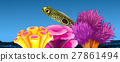 Underwater scene with fish and coral reef 27861494