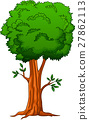 Illustration of a big tree 27862113