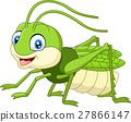 Cute grasshopper cartoon 27866147
