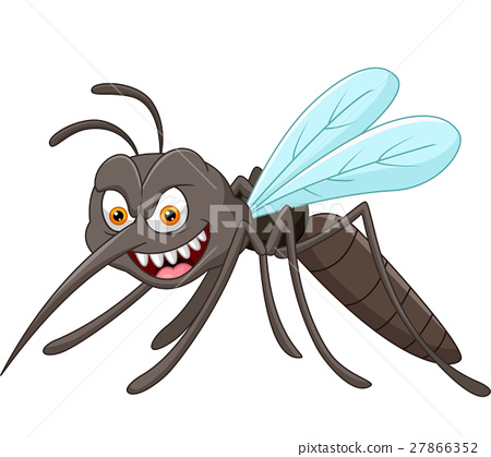 Mosquito Cartoon Stock Illustration 27866352 Pixta
