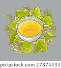 cup of linden tea 27874433