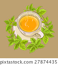 cup of melissa tea 27874435