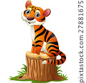 Cartoon tiger sitting on tree stump 27881675