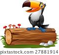 Cartoon funny toucan standing on tree log 27881914