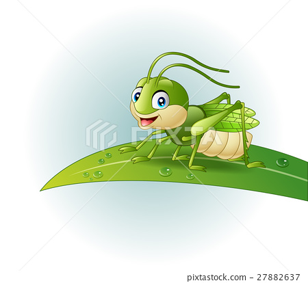Cartoon grasshopper on leaf 27882637