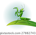 insect cartoon mantis 27882743